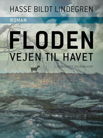 Hasse Bildt Lindegren: Floden - vejen til havet : roman