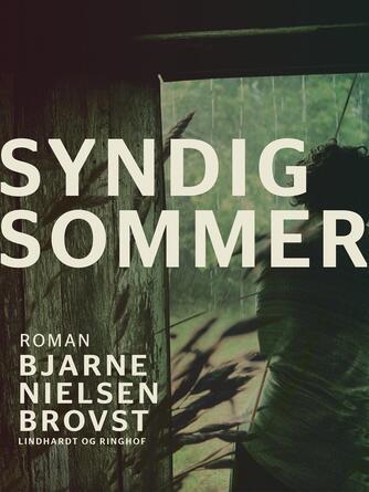 Bjarne Nielsen Brovst: Syndig sommer : roman