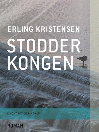 Erling Kristensen (f. 1893): Stodderkongen : Roman