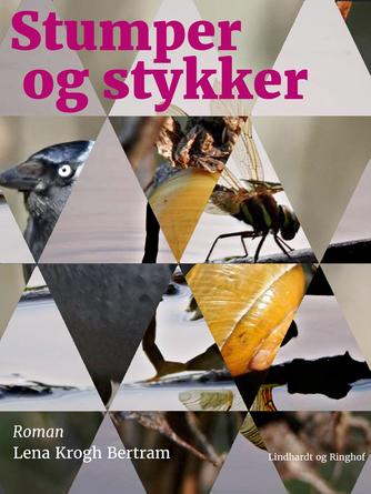 Lena Krogh Bertram: Stumper og stykker : roman