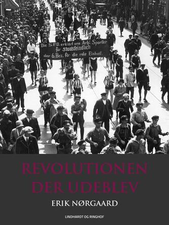 Erik Nørgaard (f. 1929): Revolutionen der udeblev