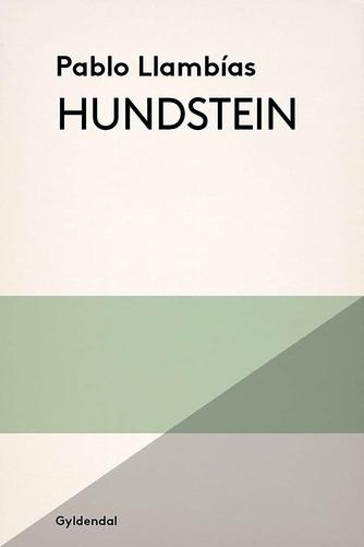 Pablo Llambías: Hundstein