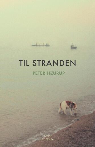 Peter Højrup: Til stranden : roman