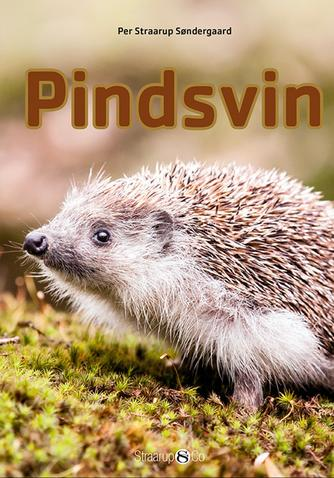 Per Straarup Søndergaard: Pindsvin