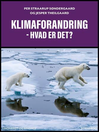 : Klimaforandring - hvad er det?