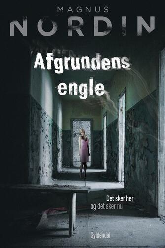Magnus Nordin: Afgrundens engle