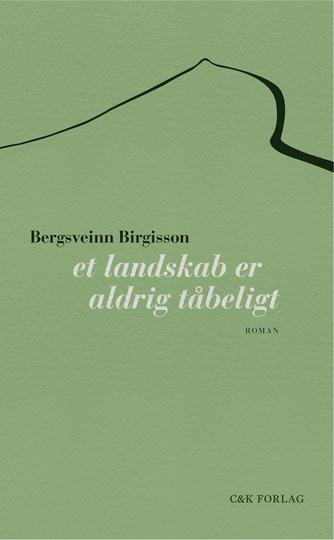 Bergsveinn Birgisson: Et landskab er aldrig tåbeligt : roman