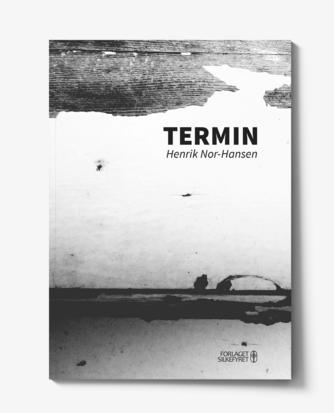 Henrik Nor-Hansen: Termin : en fremstilling af vold i Norge