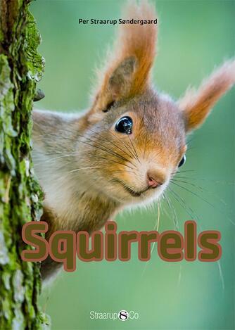 Per Straarup Søndergaard: Squirrels