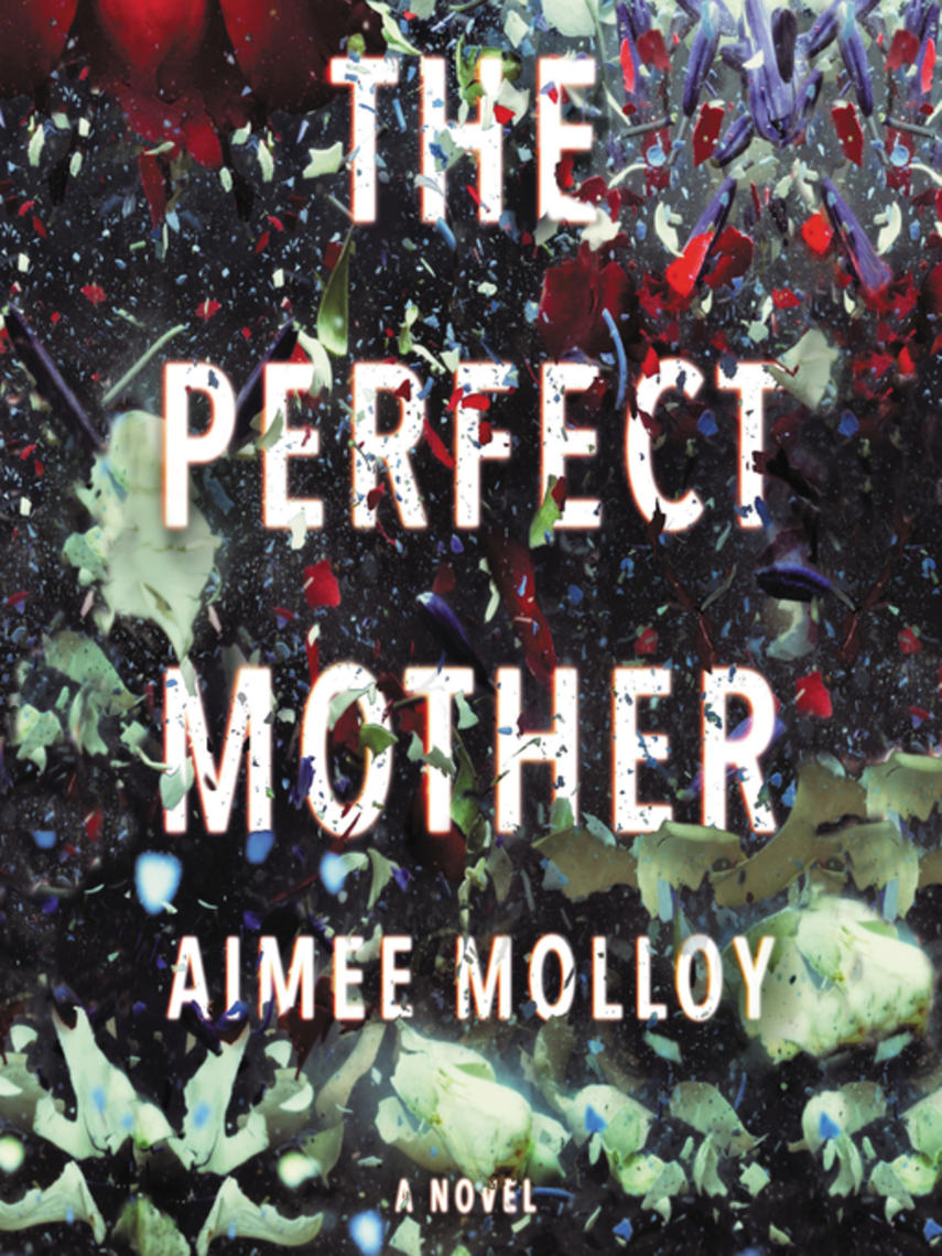 Aimee Molloy: The perfect mother : A Novel