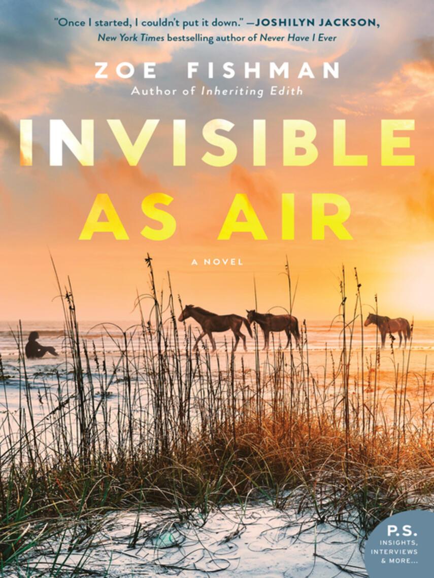 Zoe Fishman: Invisible as air : A Novel