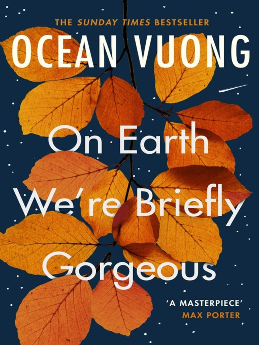 Ocean Vuong: On earth we're briefly gorgeous