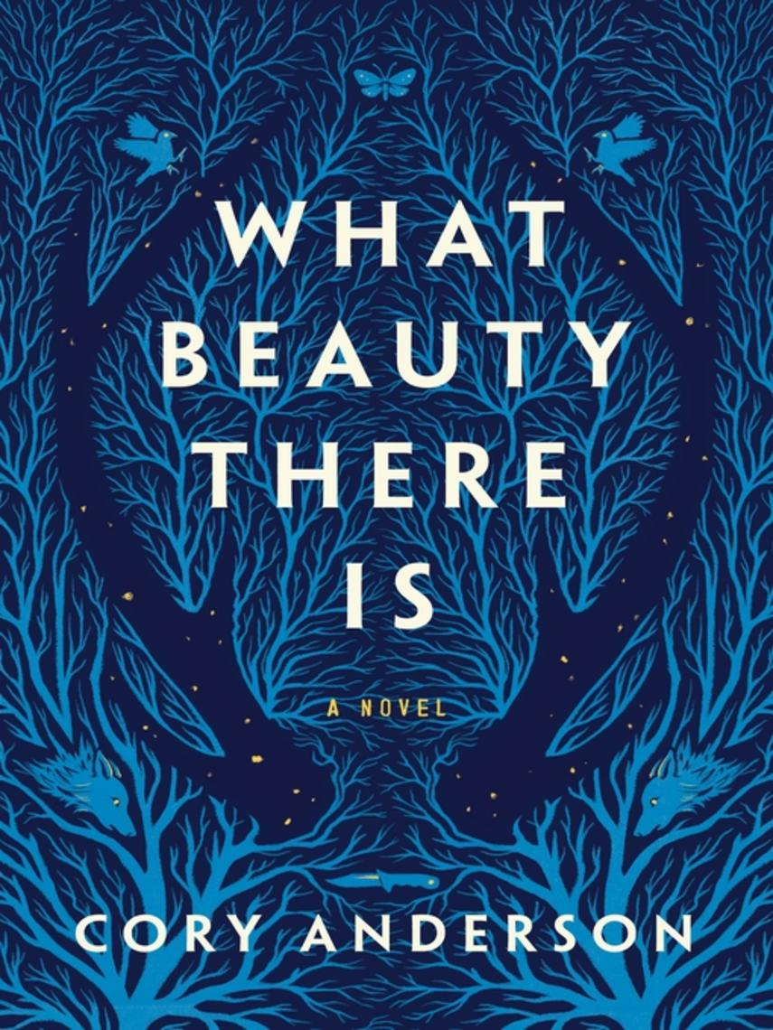Cory Anderson: What beauty there is : A novel
