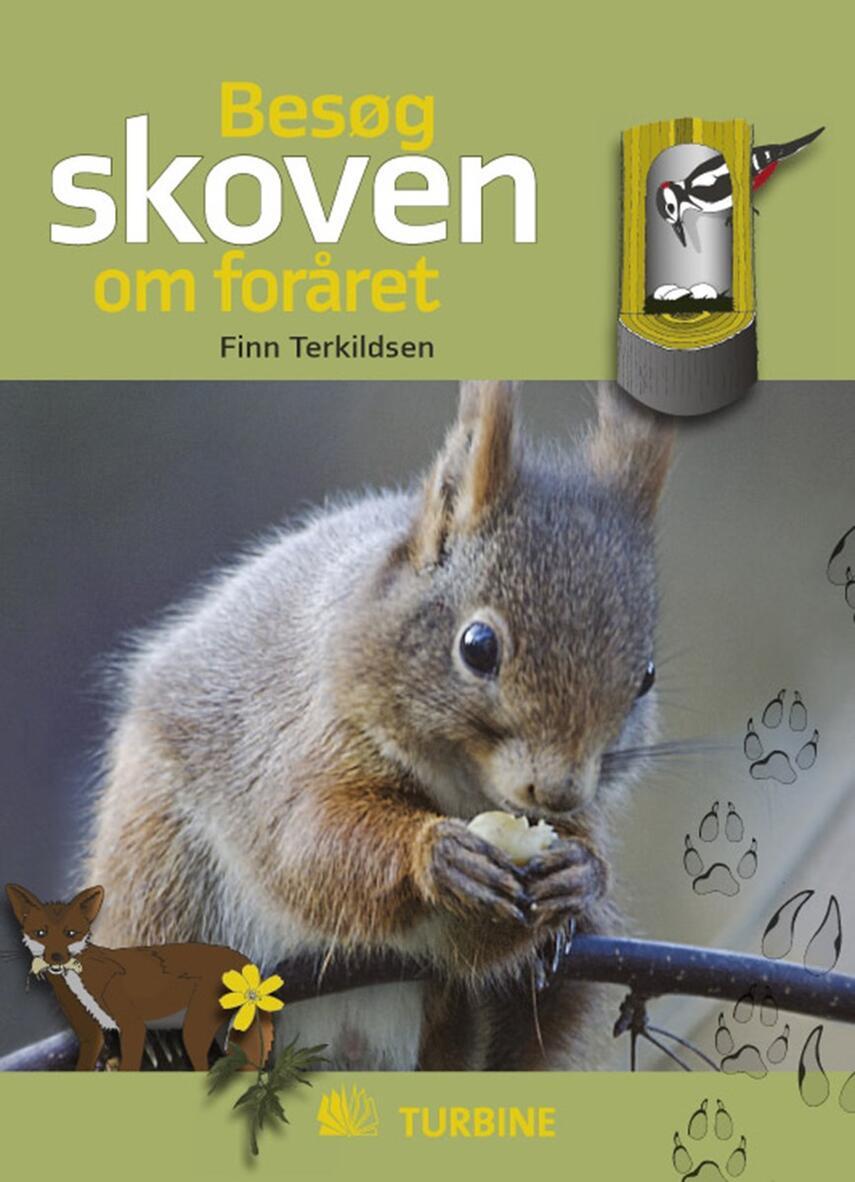 Finn Terkildsen: Besøg skoven om foråret