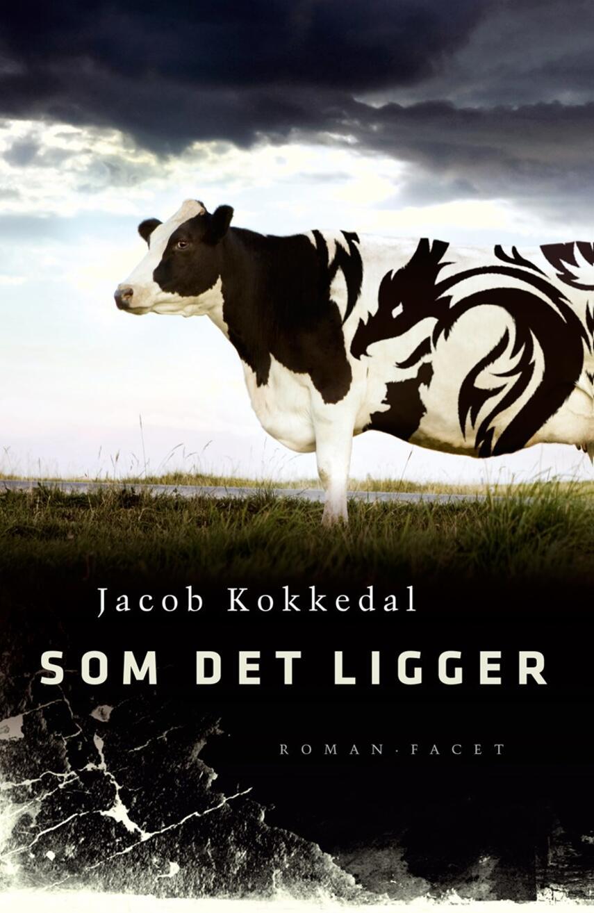 Jacob Kokkedal: Som det ligger : roman