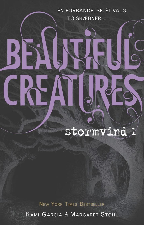Kami Garcia: Beautiful creatures - stormvind. 1
