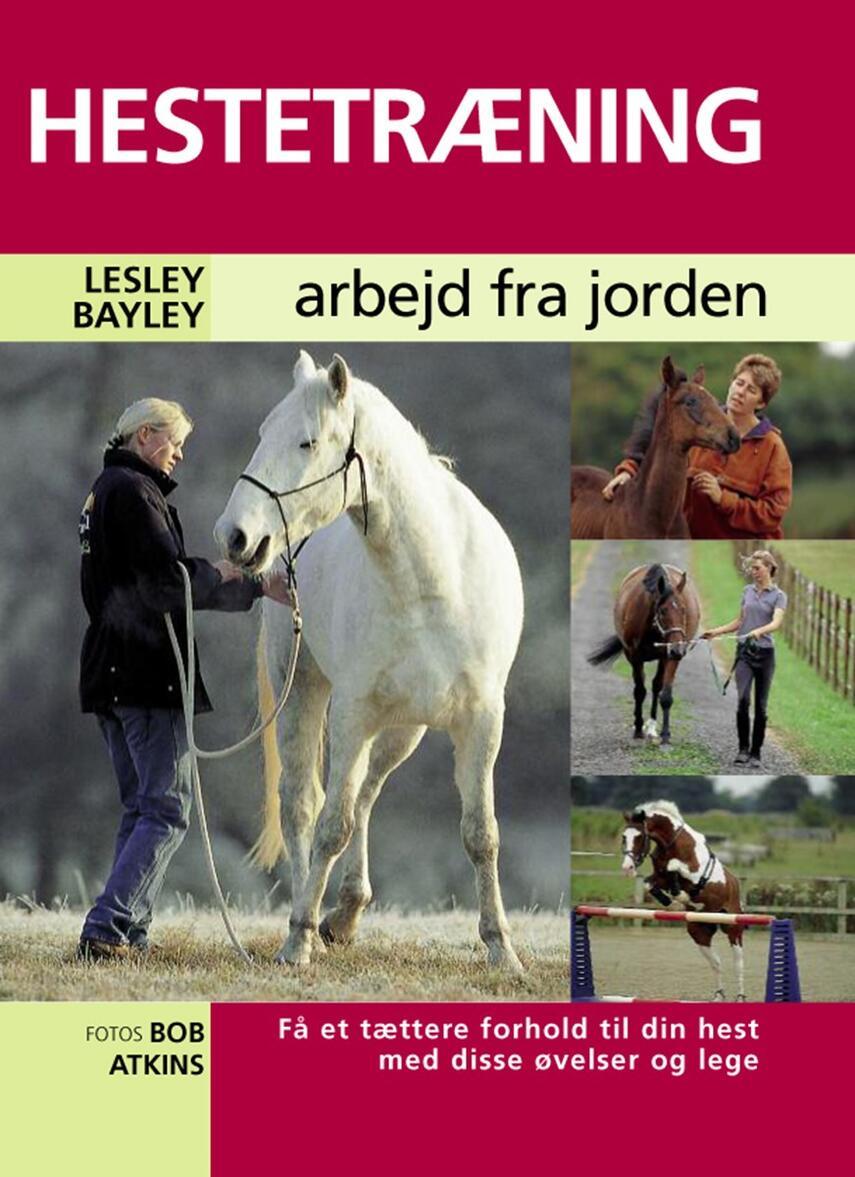 Lesley Bayley: Hestetræning : arbejd fra jorden