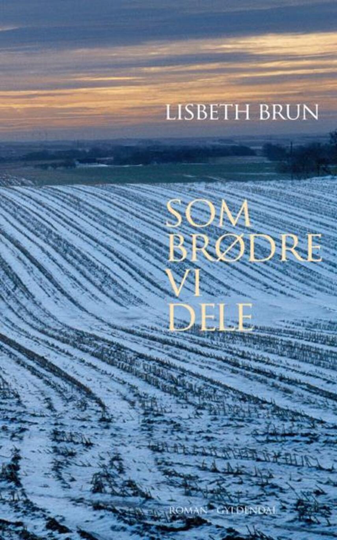 Lisbeth Brun: Som brødre vi dele : roman