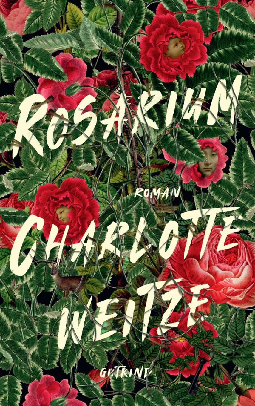 Charlotte Weitze: Rosarium : roman