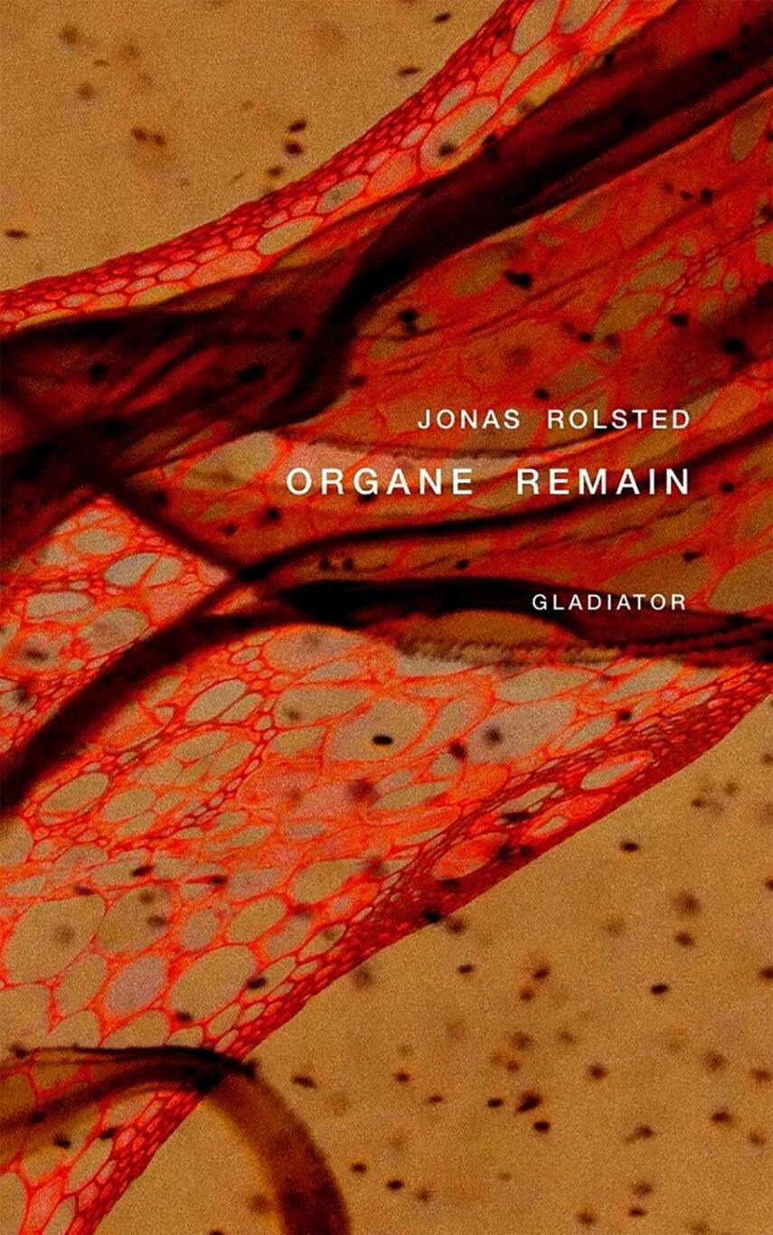 Jonas Rolsted: Organe remain