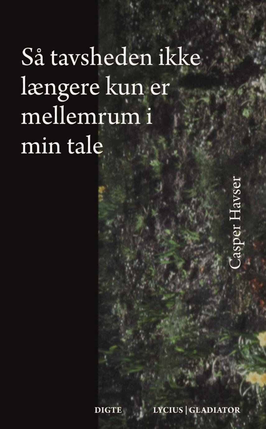 Casper Havser: Så tavsheden ikke længere kun er mellemrum i min tale : digte