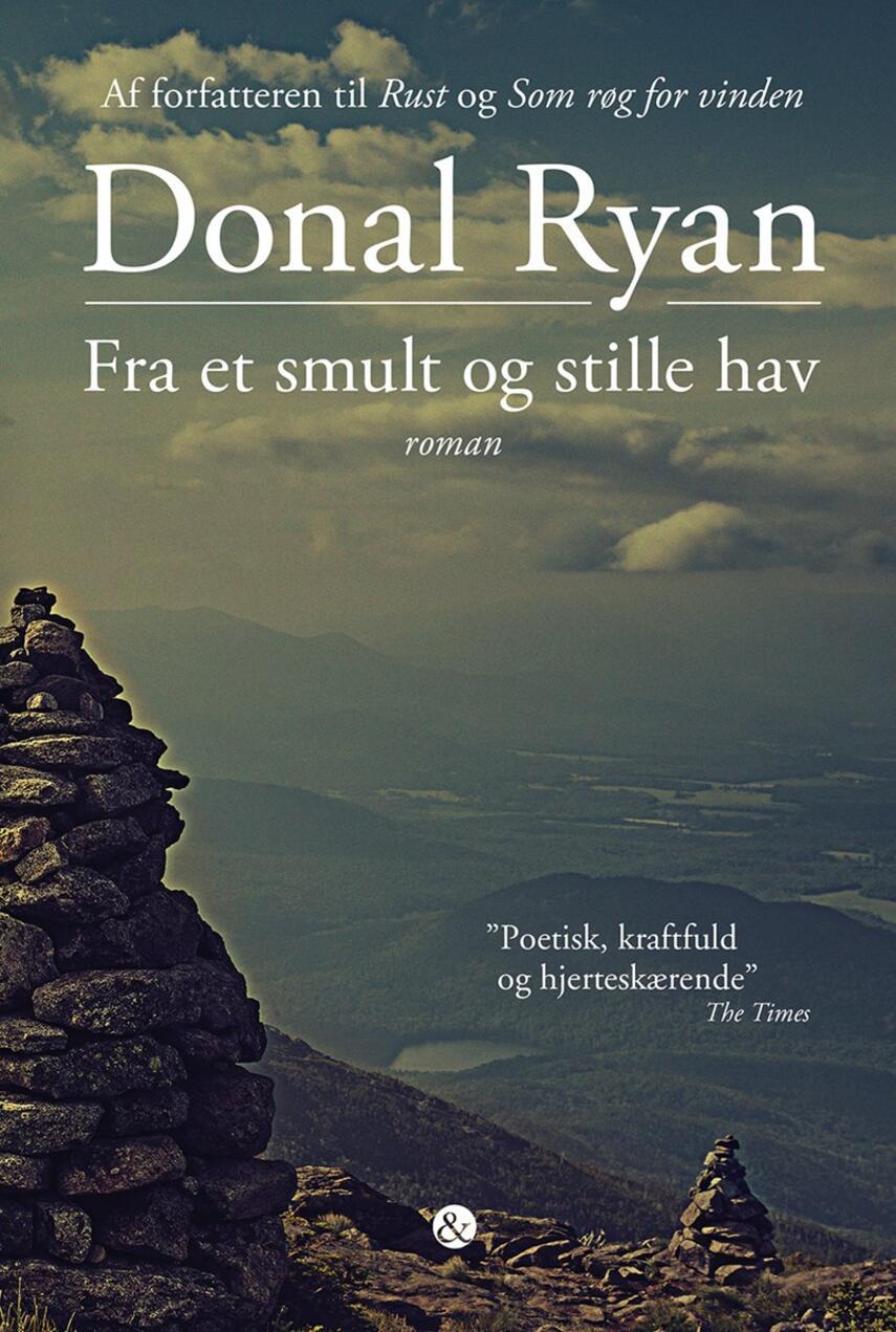 Donal Ryan: Fra et smult og stille hav : roman