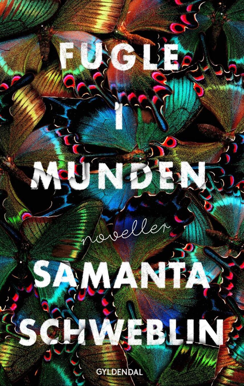 Samanta Schweblin: Fugle i munden : noveller