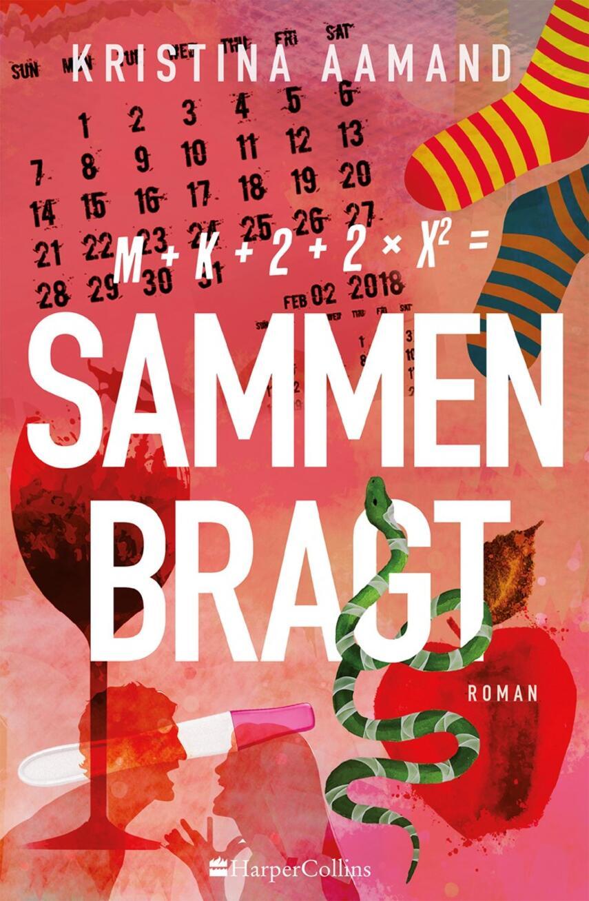 Kristina Aamand: Sammenbragt : roman