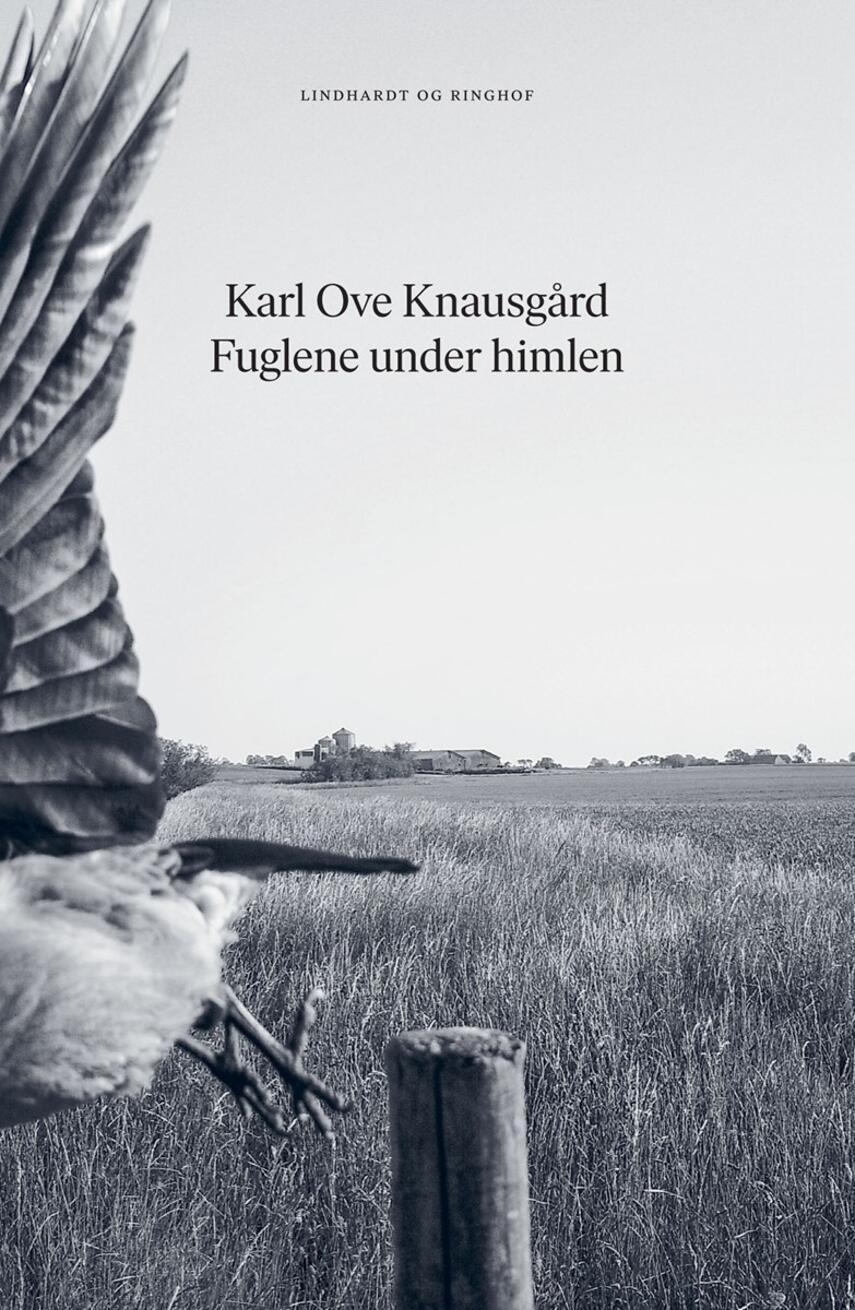 Karl Ove Knausgård: Fuglene under himlen