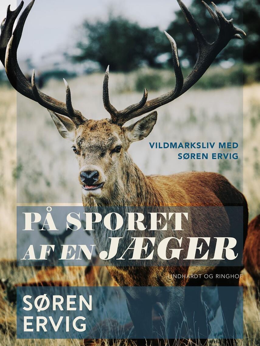 Søren Ervig: På sporet af en jæger : vildmarksliv med Søren Ervig
