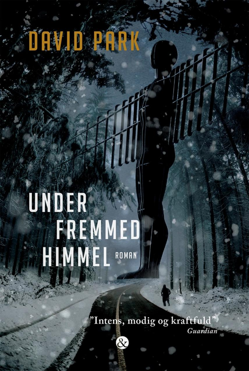 David Park: Under fremmed himmel : roman