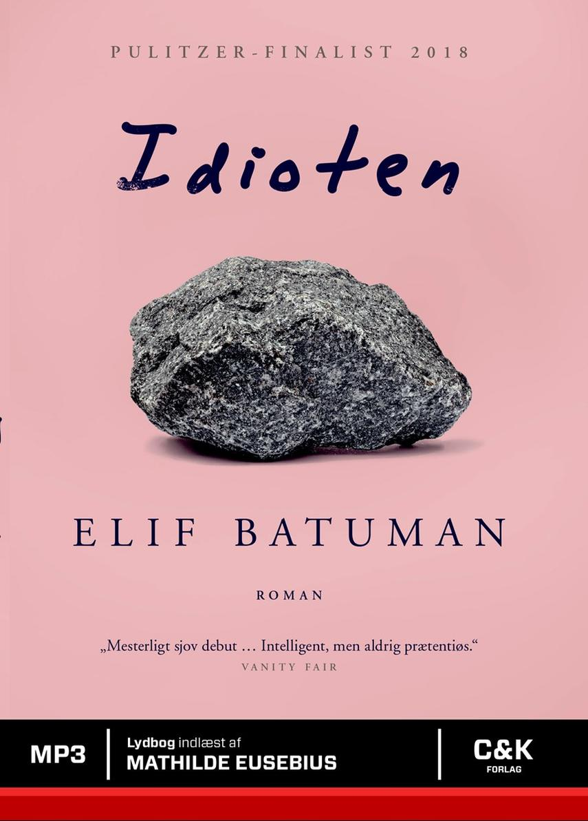 Elif Batuman: Idioten