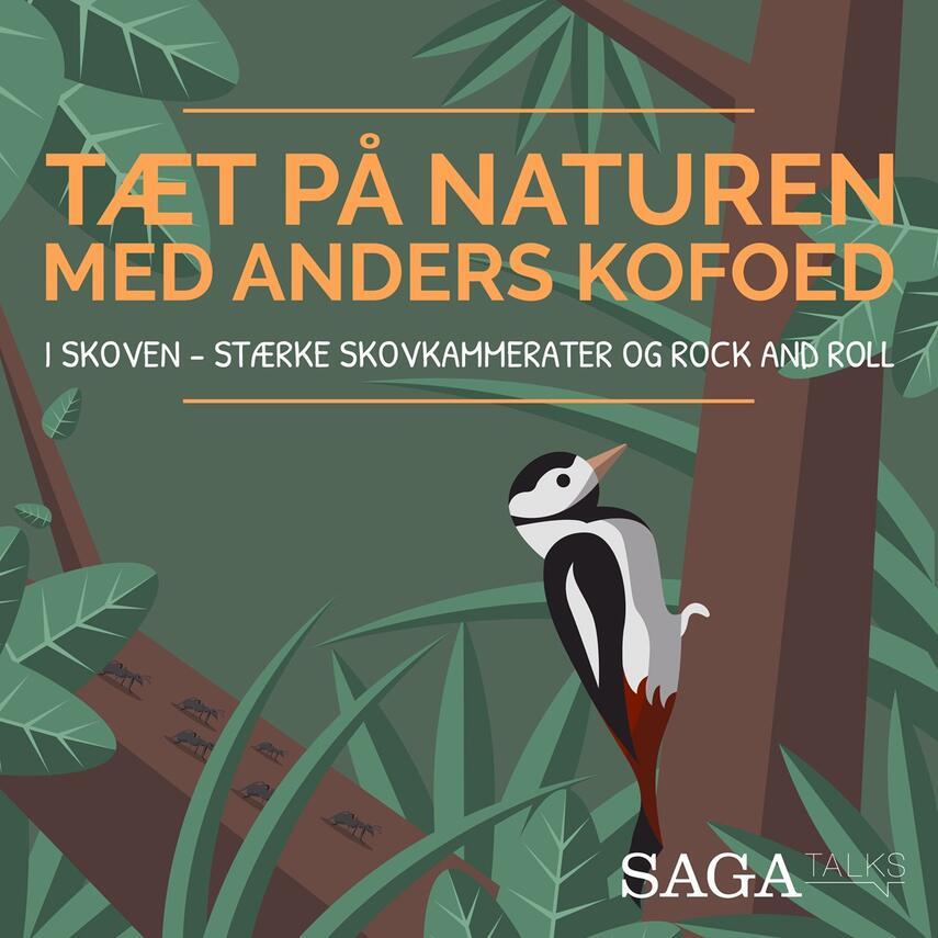 Anders Kofoed: I skoven - stærke skovkammerater og rock and roll