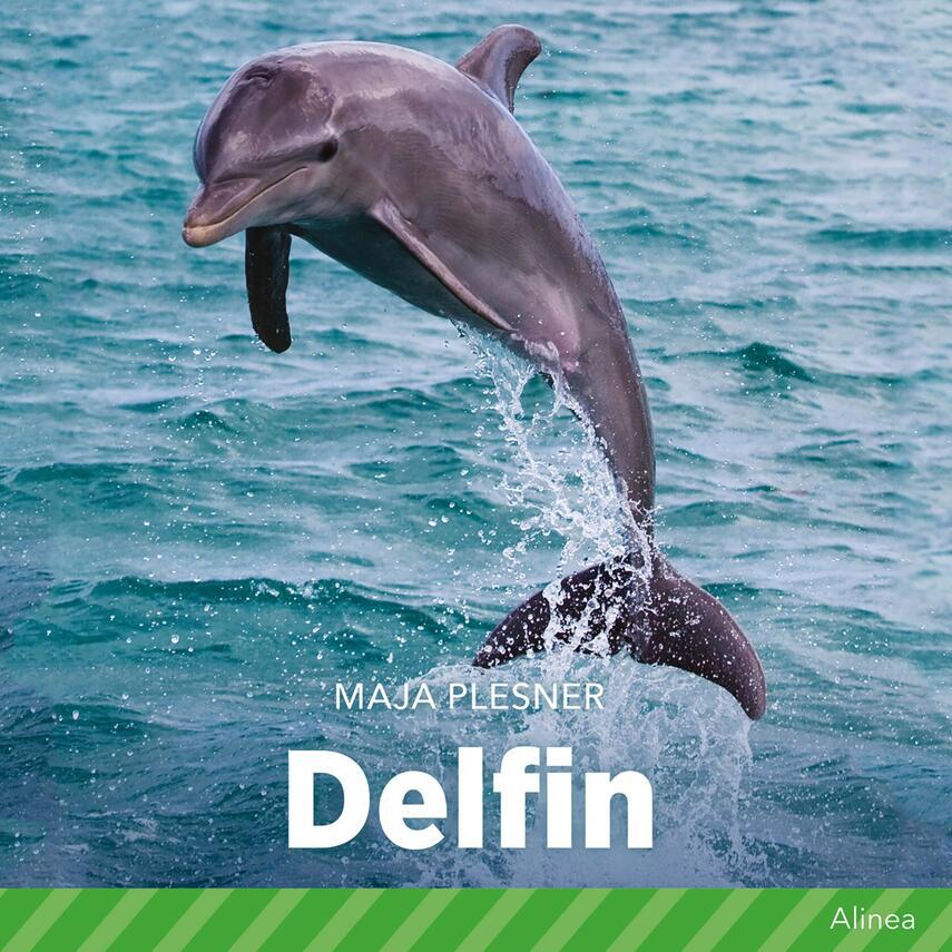 Maja Plesner: Delfin