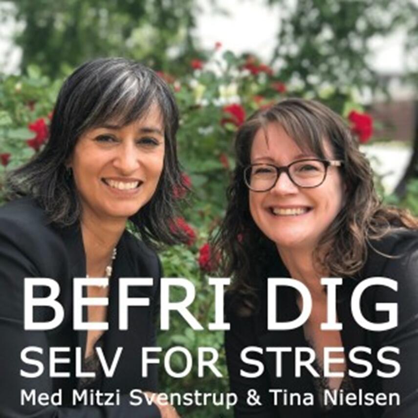 : Befri dig selv for stress. 9, Bekymringer, corona, mentaltræning