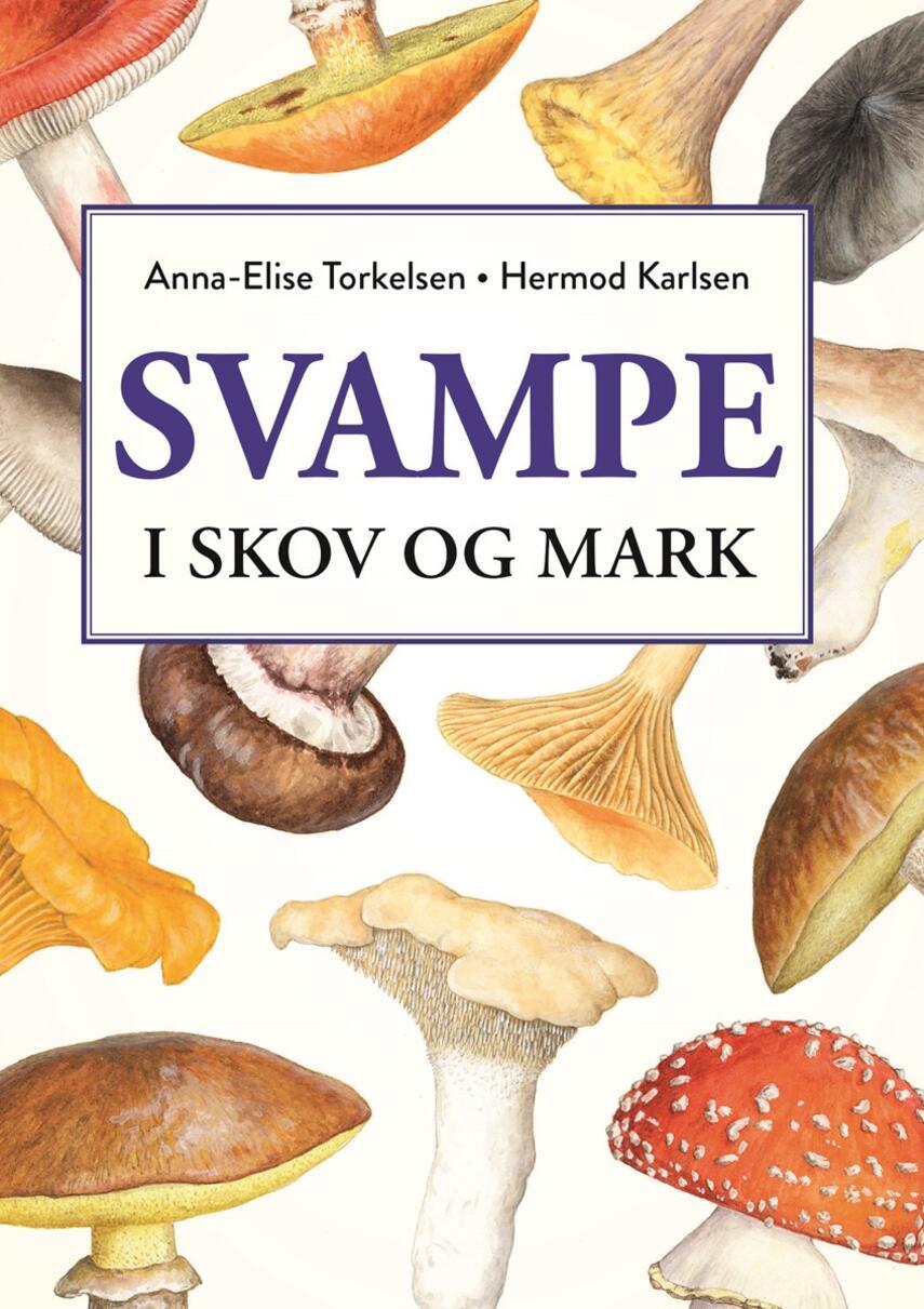 Anna-Elise Torkelsen: Svampe i skov og mark