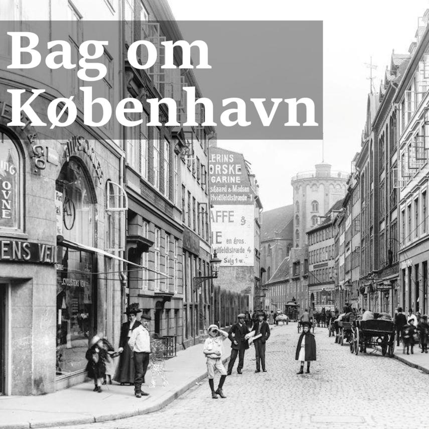 Berit Freyheit: En forbryders liv i 1800-tallet - Ole Kollerød