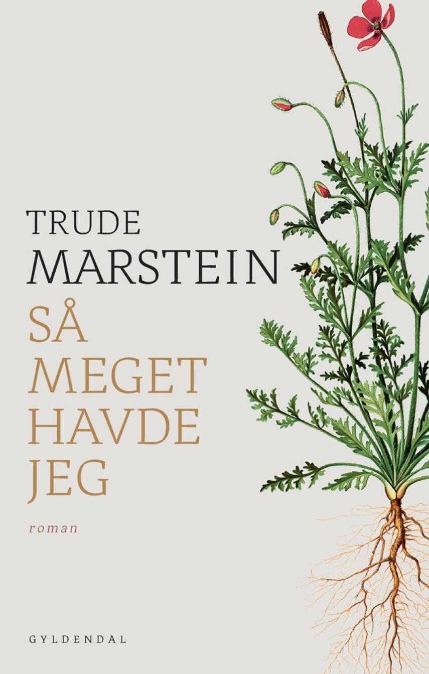 Trude Marstein: Så meget havde jeg : roman