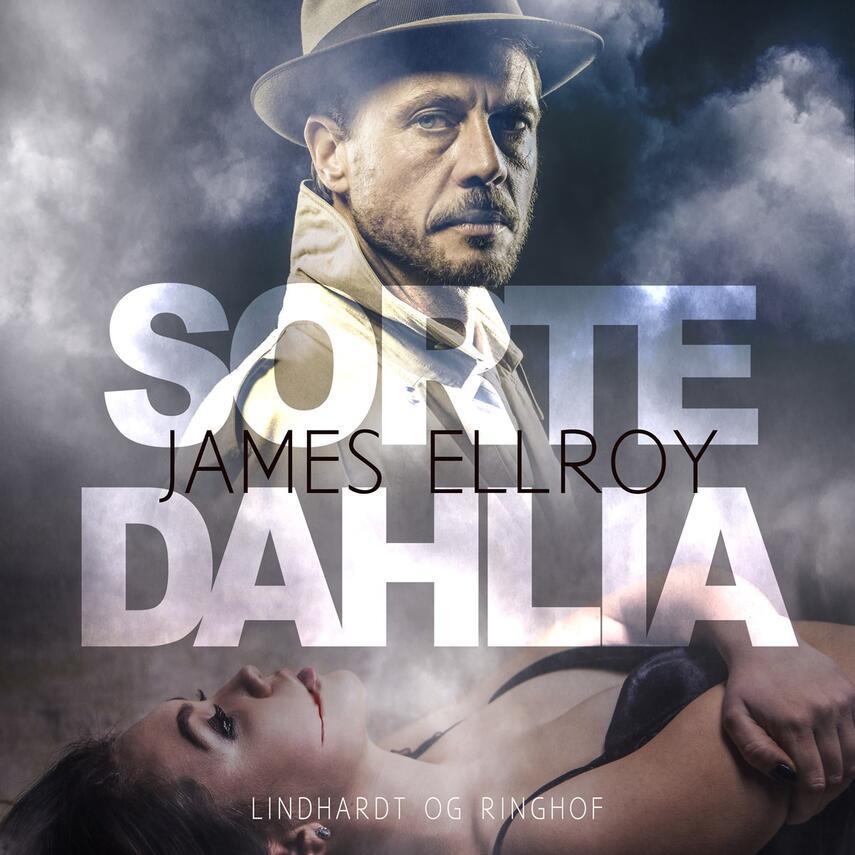 : Sorte Dahlia