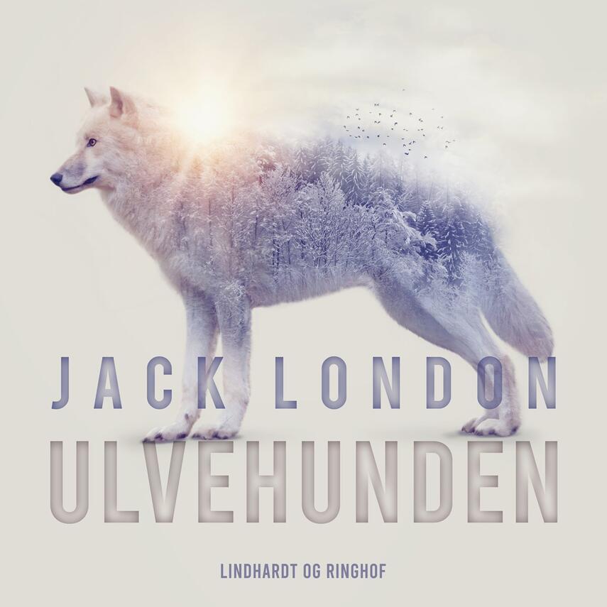 Jack London: Ulvehunden (Ved Grete Juel Jørgensen)