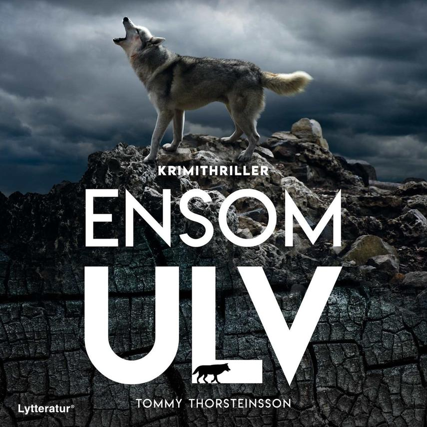 Tommy Thorsteinsson (f. 1965): Ensom ulv : krimithriller