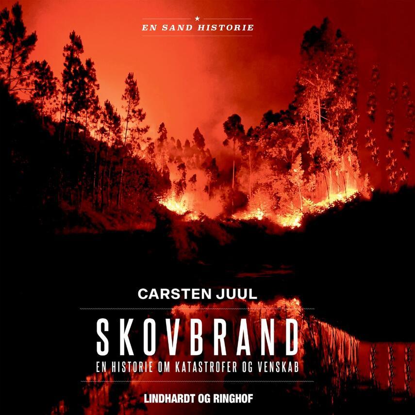 Carsten Juul: Skovbrand : en historie om katastrofer og venskab