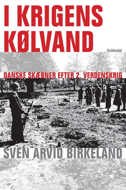 Sven Arvid Birkeland: I krigens kølvand : danske skæbner efter 2. verdenskrig