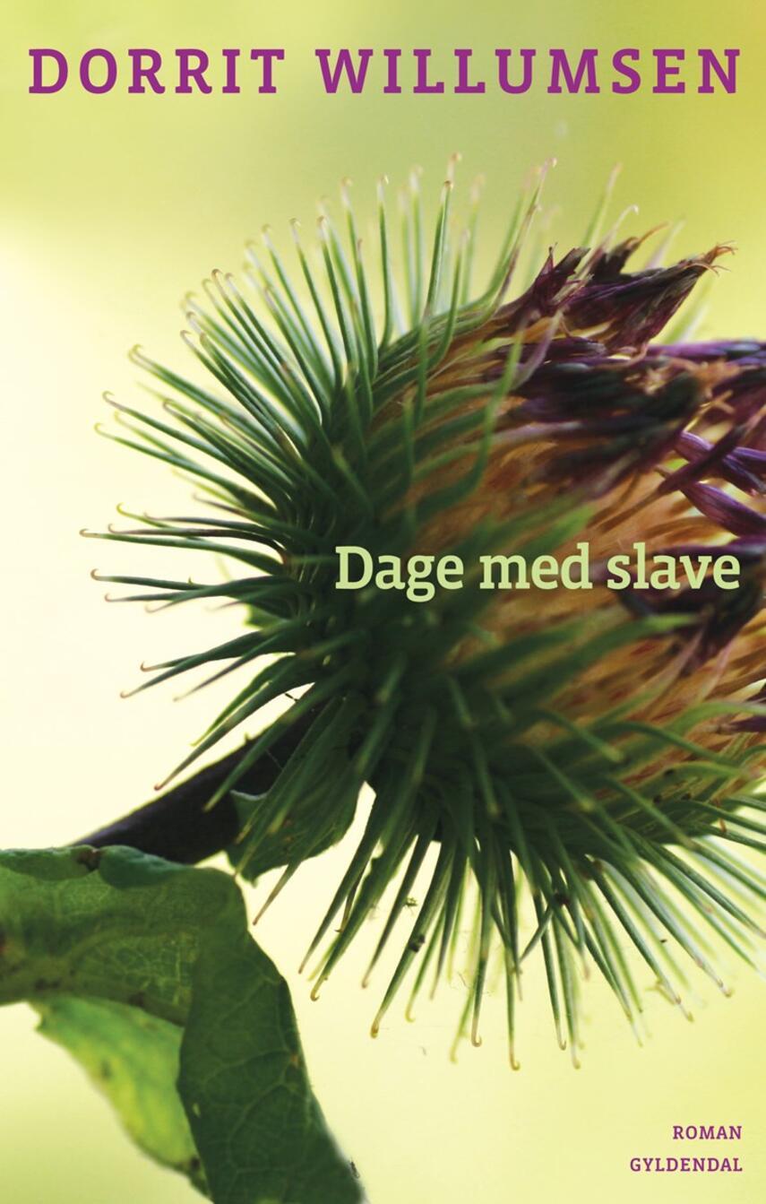 Dorrit Willumsen: Dage med slave