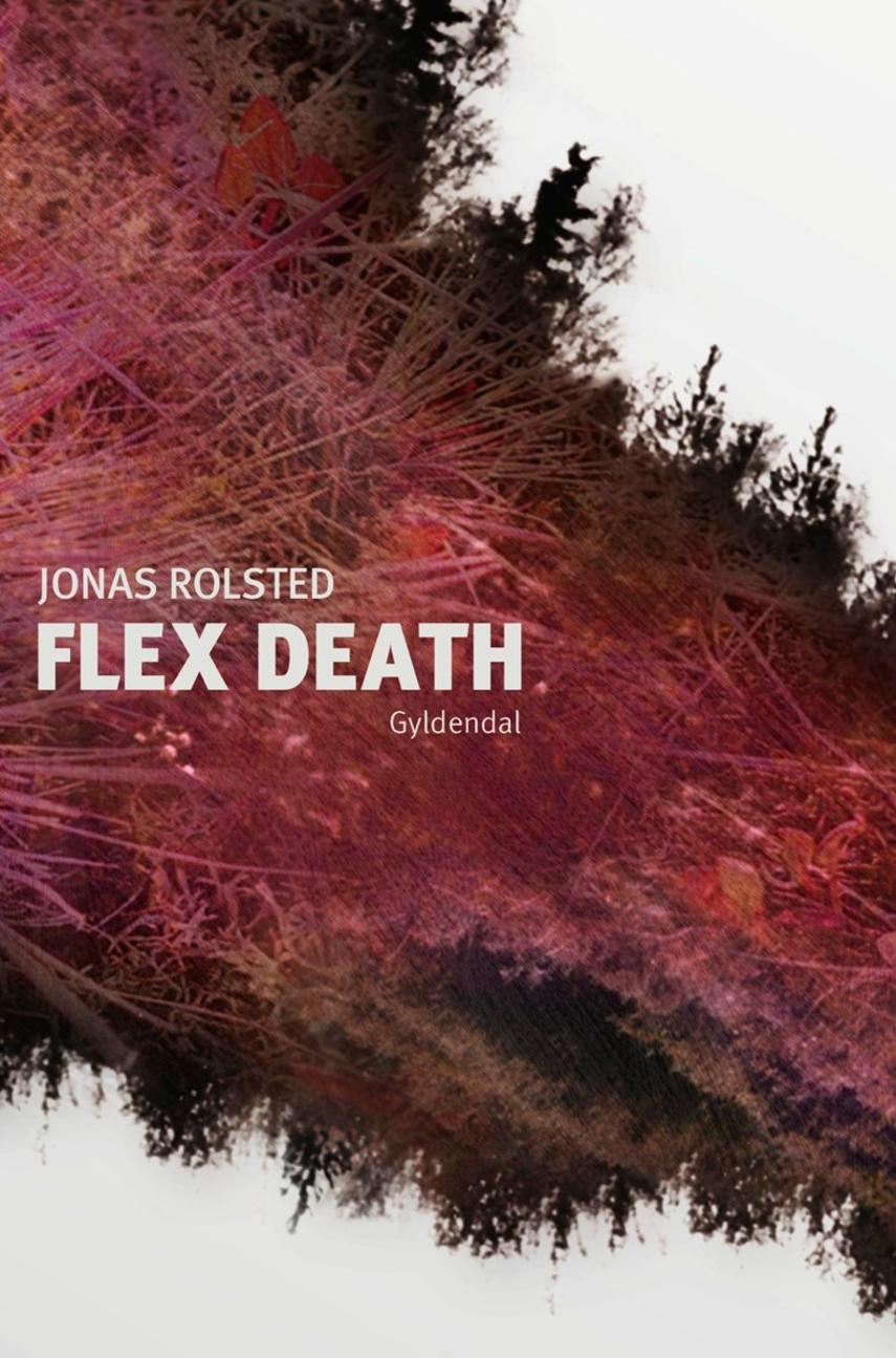 Jonas Rolsted: Flex death : et digt