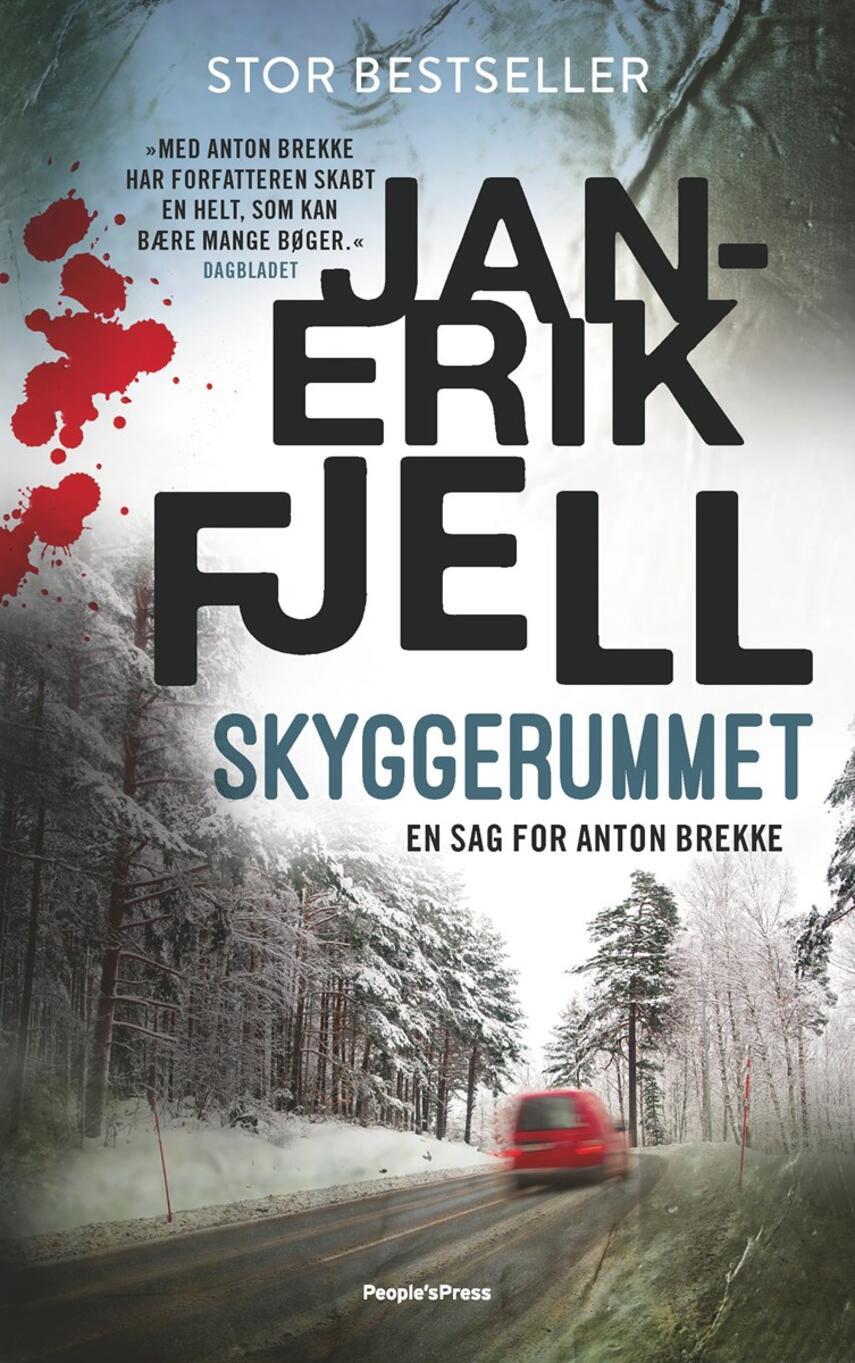 Jan-Erik Fjell (f. 1972): Skyggerummet