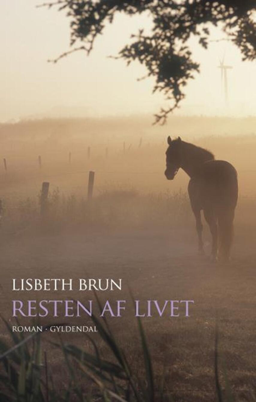 Lisbeth Brun: Resten af livet : roman