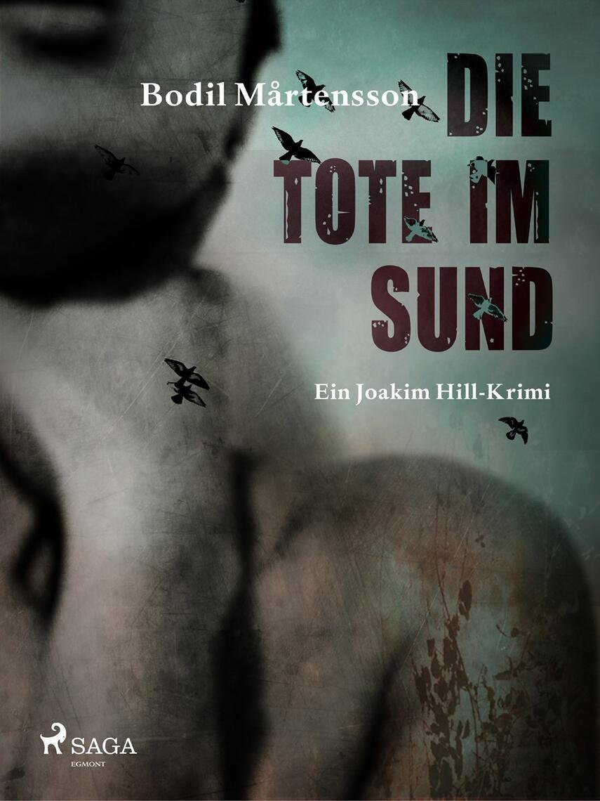 Bodil Mårtensson: Die Tote im Sund