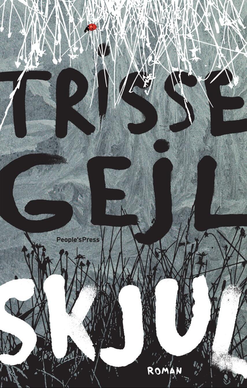 Trisse Gejl: Skjul : roman