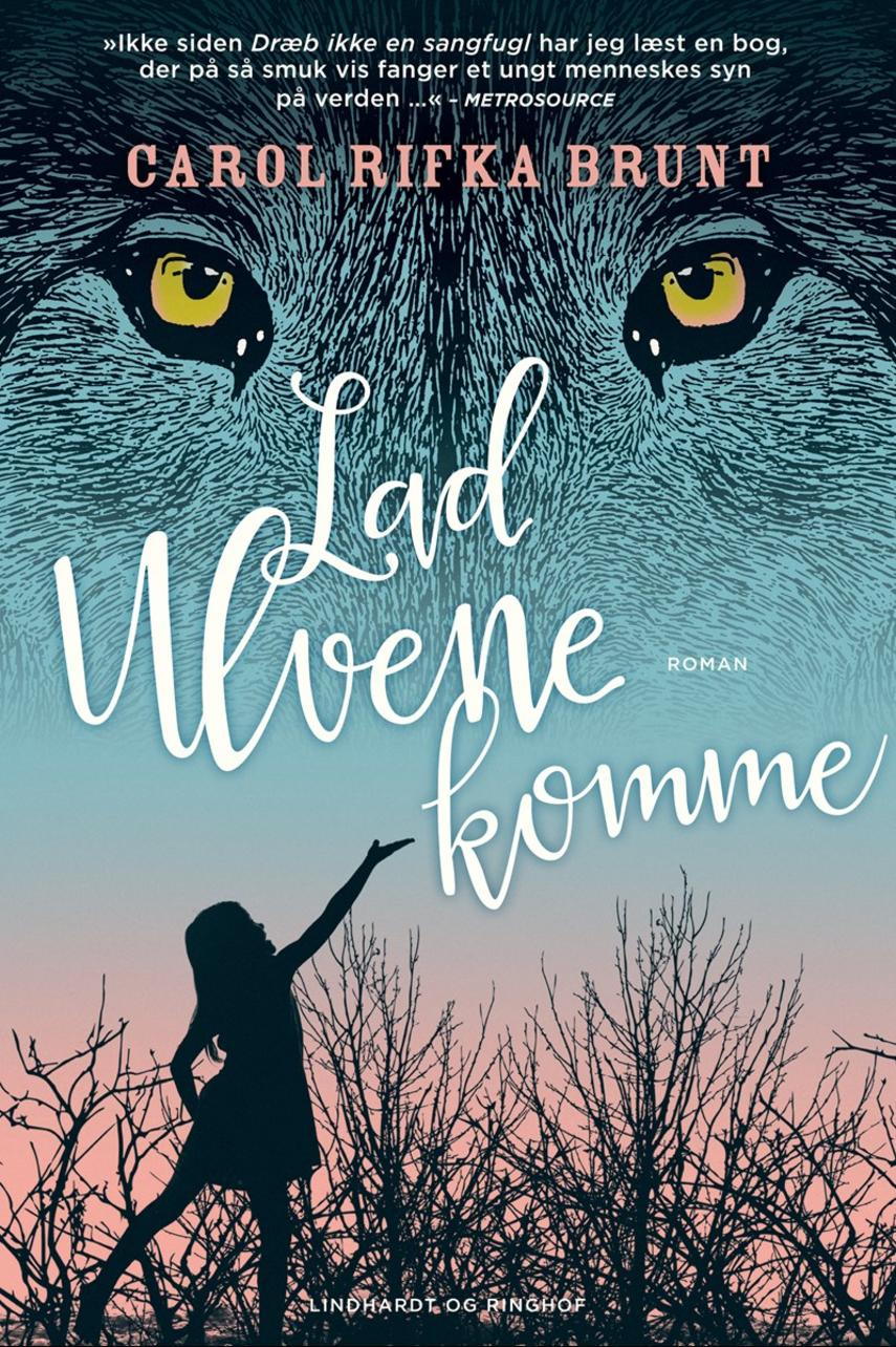 Carol Rifka Brunt: Lad ulvene komme : roman